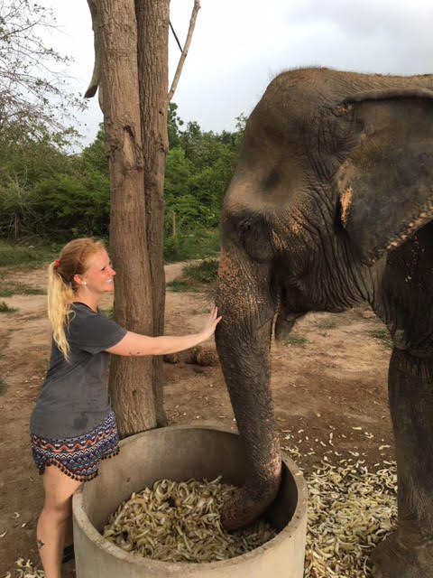 An international volunteer bonds with an elephant.