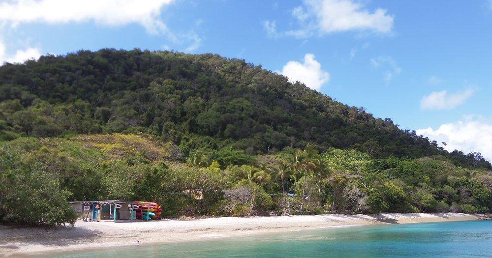 Sea Turtle Cairns 170.JPG