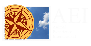 Animal Experience International