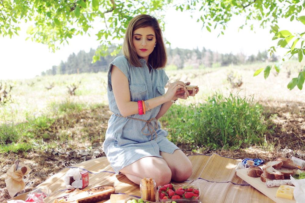 picnic (1)