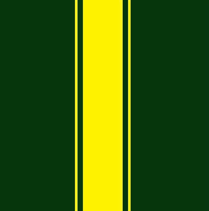 Racing stripes.jpg