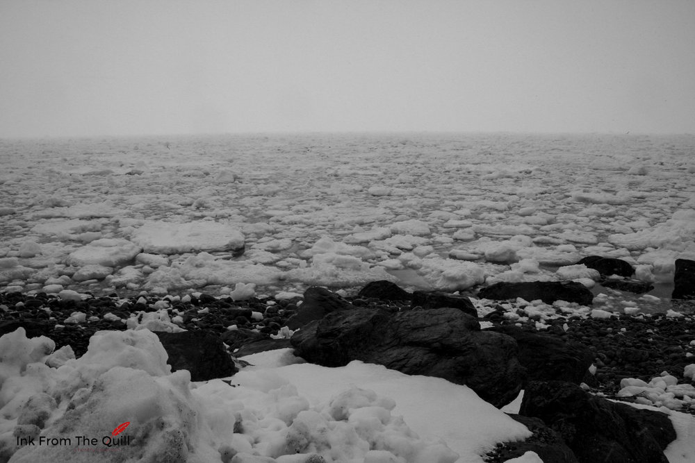 Sea ice in Portugal Cove, Newfoundland