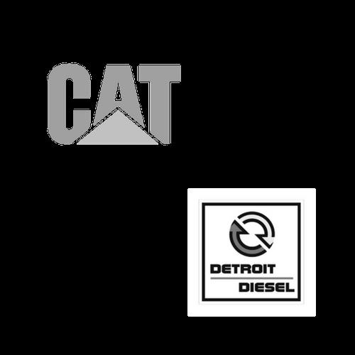 cat-det.png