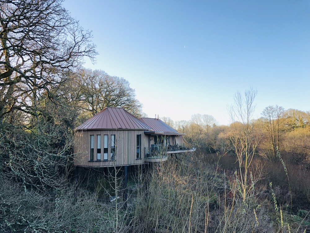 chewton_glen_treehouse.jpg