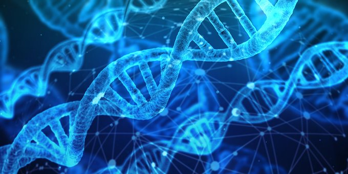 ผลการค้นหารูปภาพสำหรับ heredity