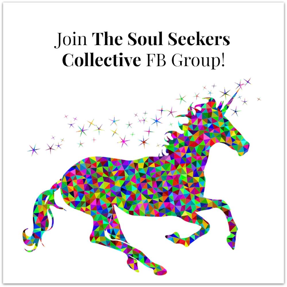 Soul Seekers Collective.jpg