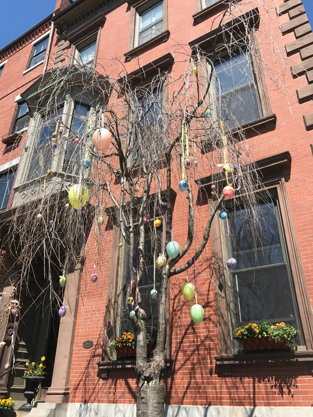 House accross the street from the monument, a few days before easter