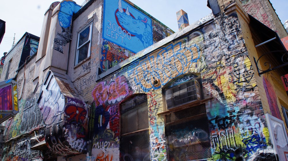 Just outside the Alley on the walls of Boa Nation is a frenzie of tags and overlapping graffiti, but again in electric blue a square of painted bricks holds so much meaning. Artists in Cambridge are using their talents to make people think.