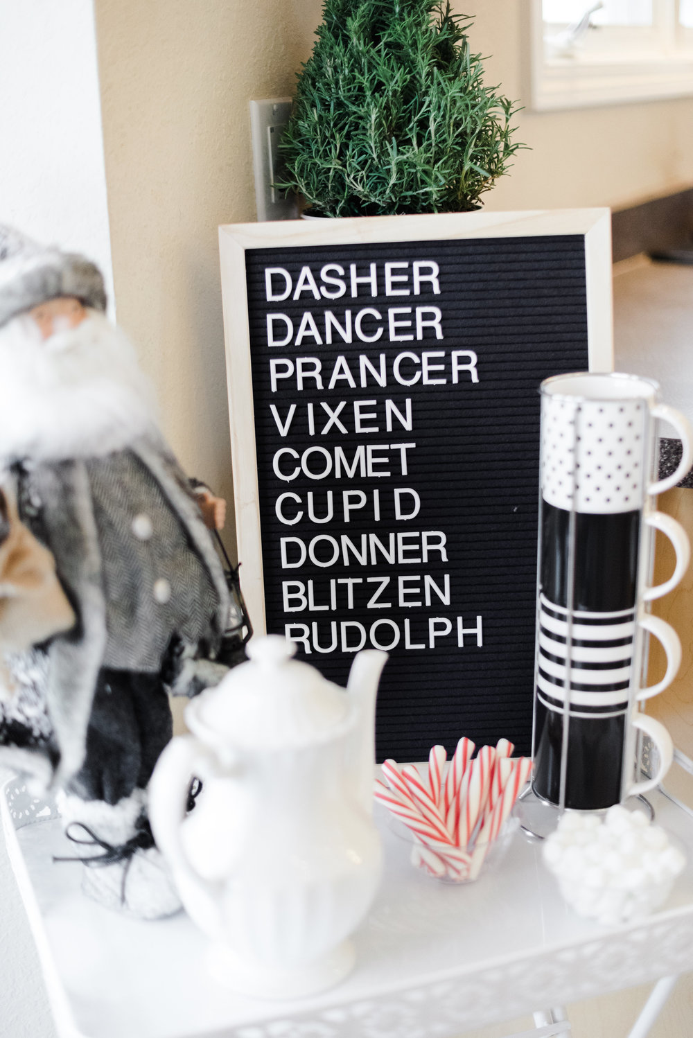 Black-and-white-themed-Christmas-decor