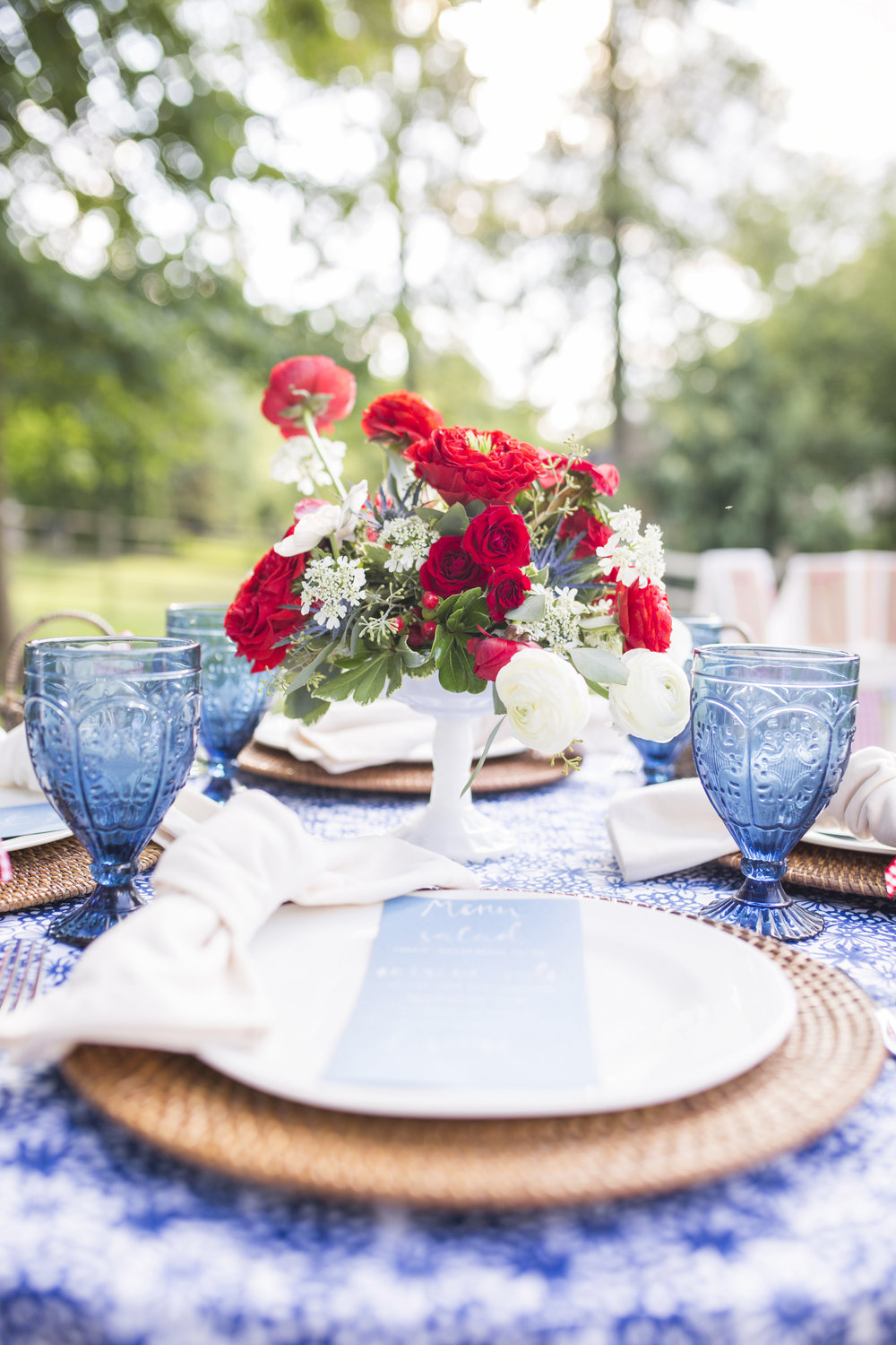 Patriotic Party Inspiration by Event Prep with Haley Elizabeth Studios-0025.jpg