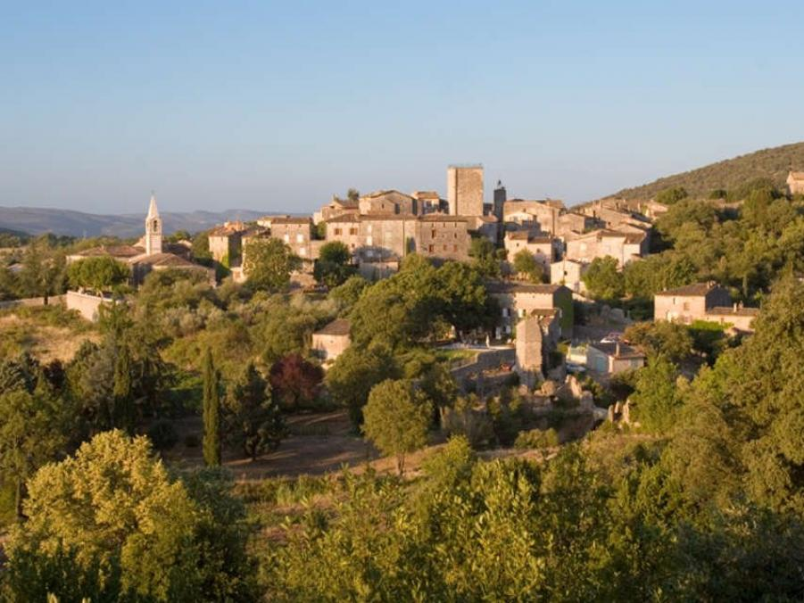 durfort-et-saint-martin-de-sossenac-9642-2_w1000.jpg