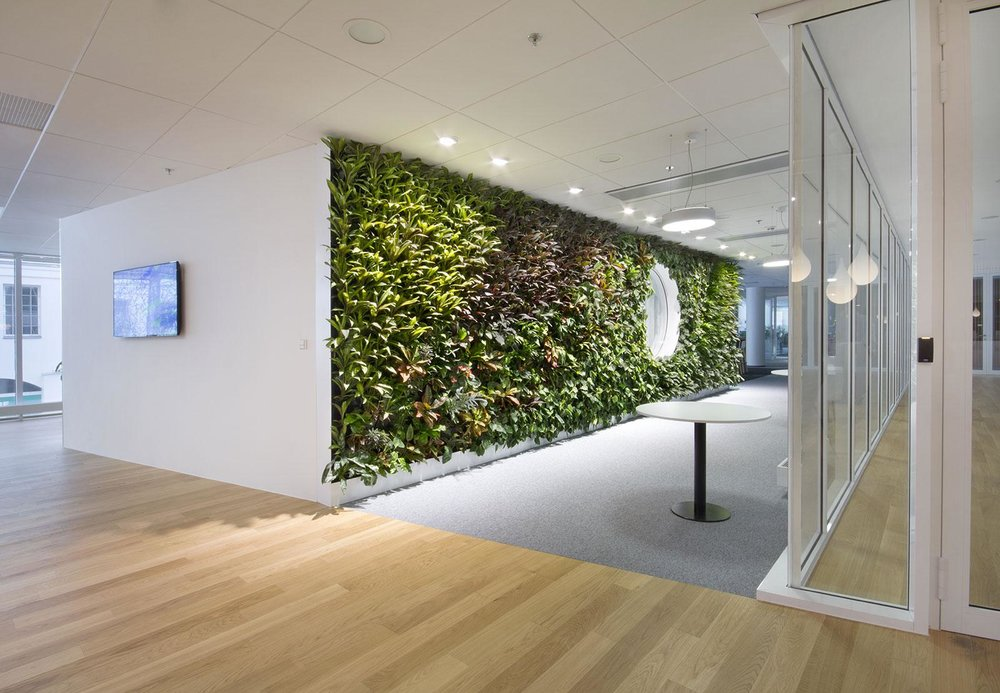 Meristem Design Nemec Living Wall