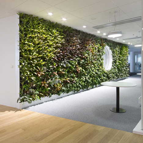 Interior Green / Living Wall