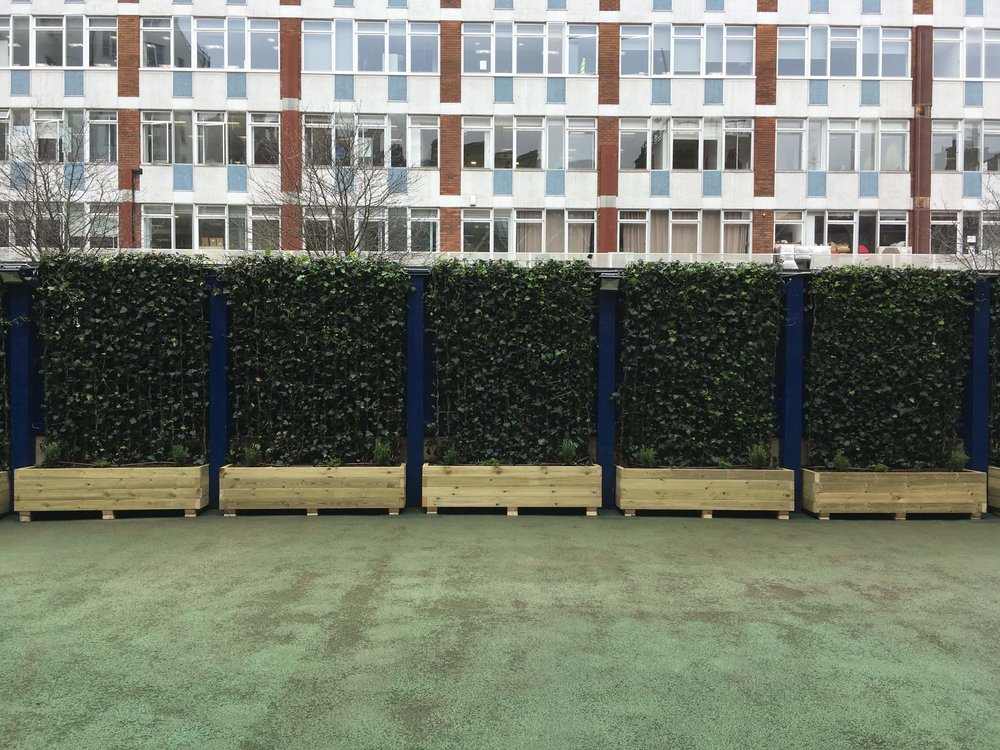 Ivy Screens at a School in London