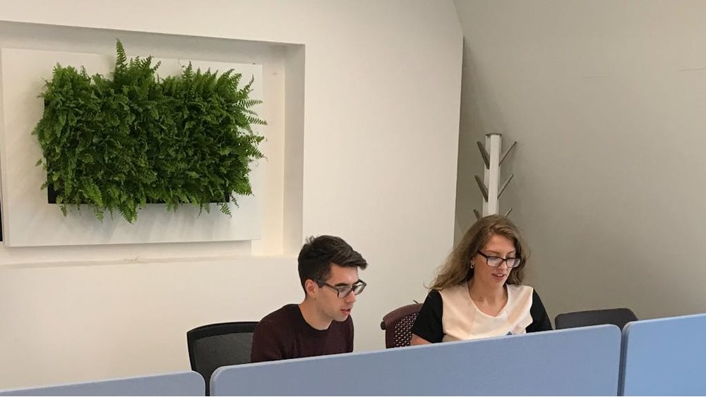 Meristem eOffice Live Picture