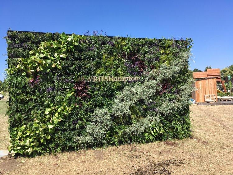 RHS Hampton Court Flower Show 2018 Living Wall 2
