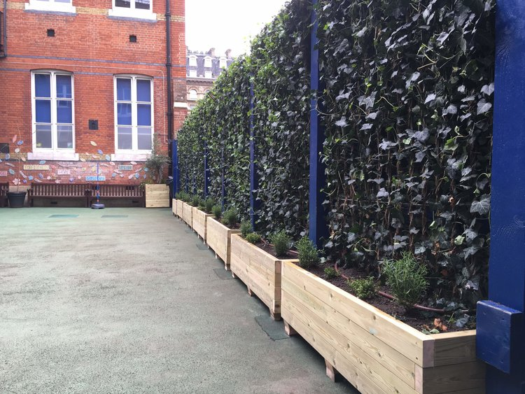 St Peter's Primary School Green Screens