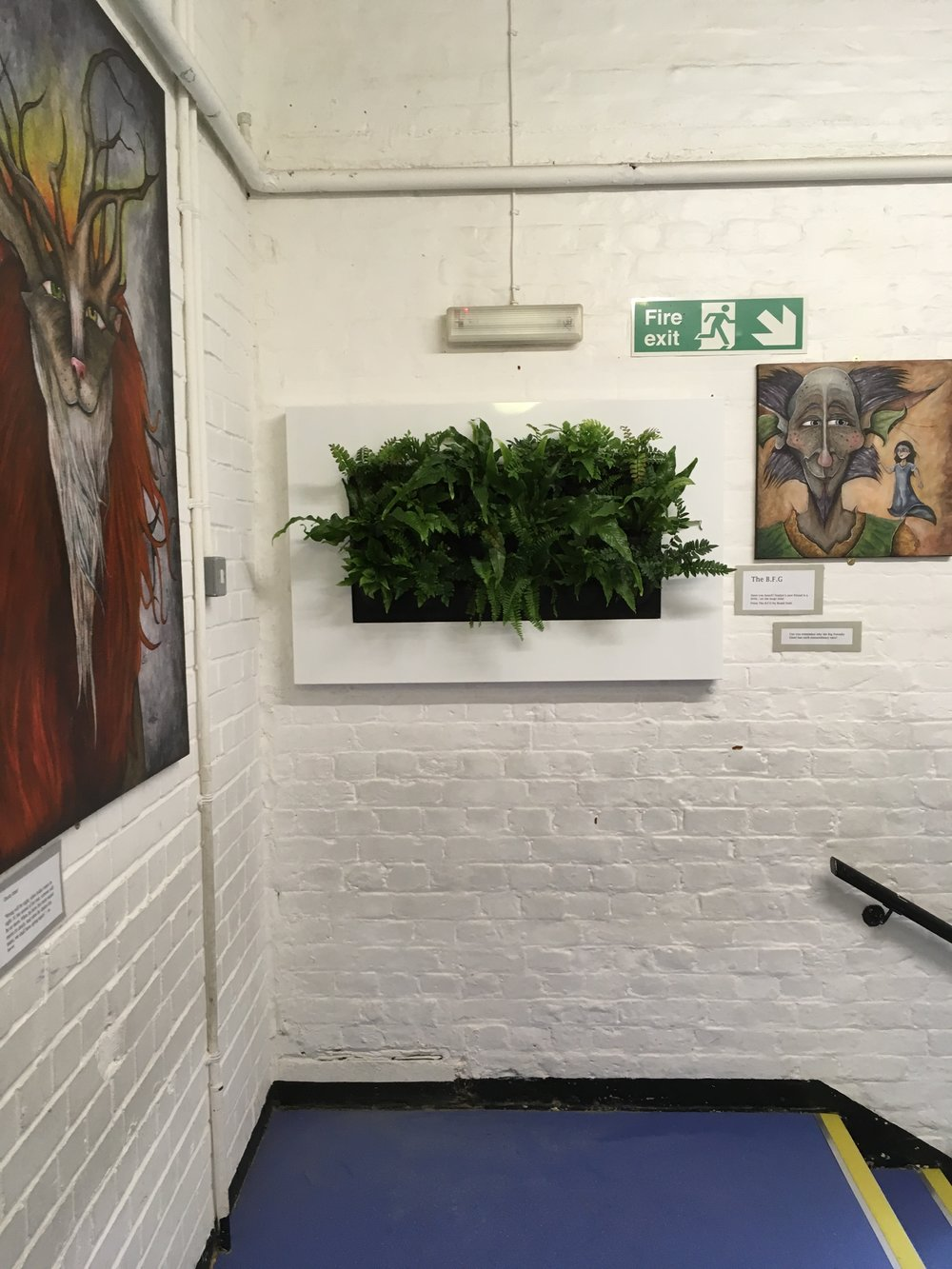 St Peter's School Living Wall