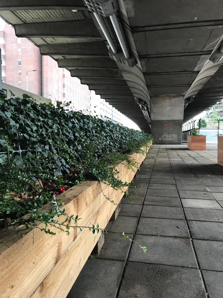 Hammersmith & Fulham Flyover Ivy Screens