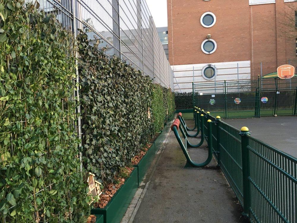 Robin Hood Junior School Green Screens