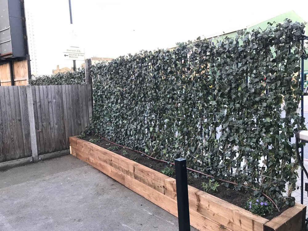 Wyvil Primary School Green Screens