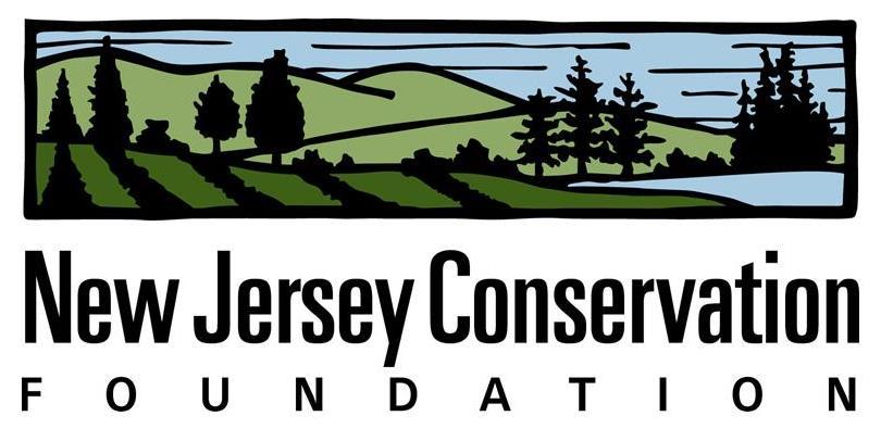 NJCF - logo color.jpg