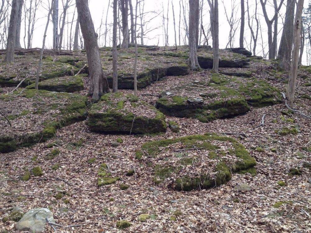 Mountainwood Spring, Hardwick NJ