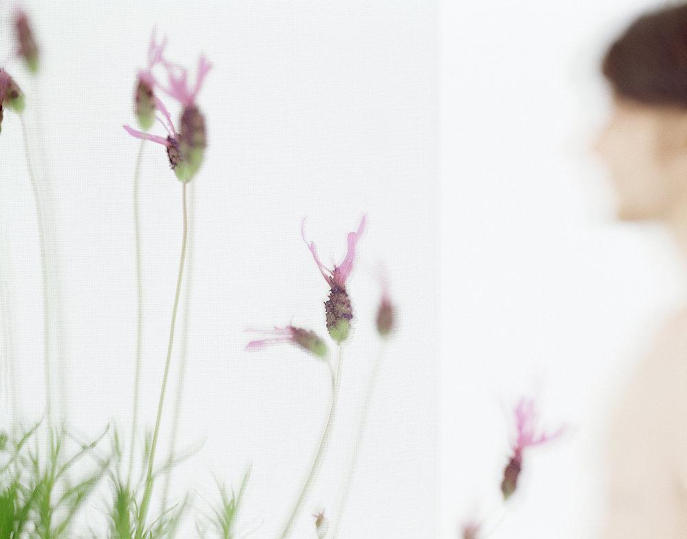 PARFUM_lui&lavande_001©AudeSIRVAIN.jpg