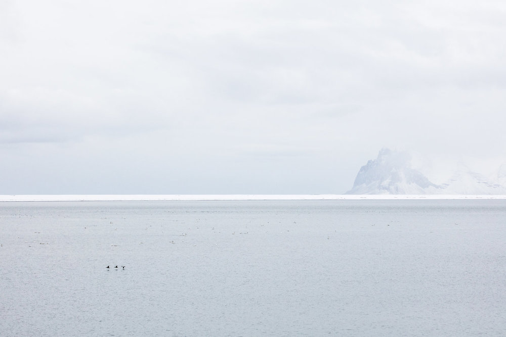 iceland12.jpg