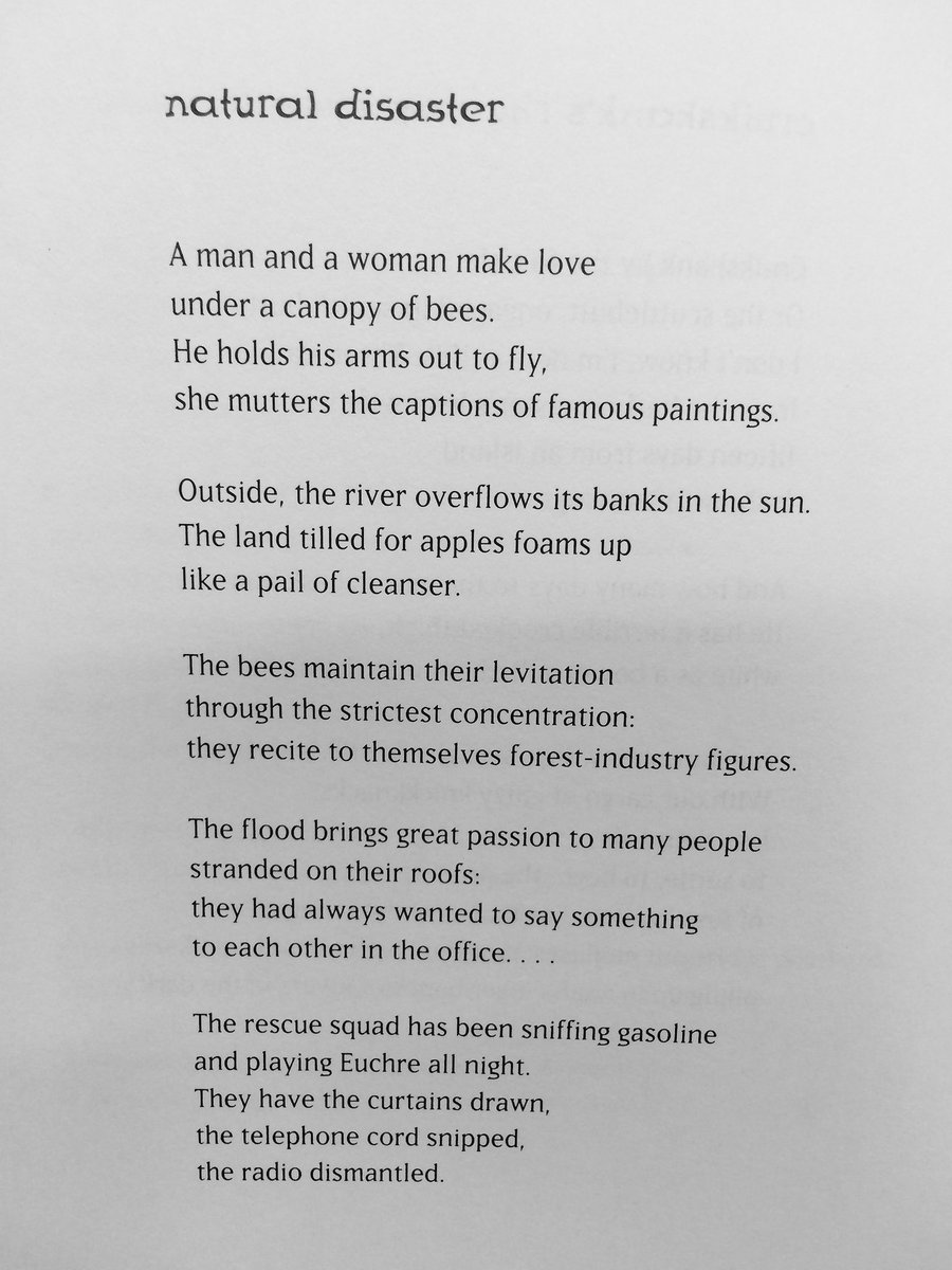 via   A Hummock in the Malookas    (1995)