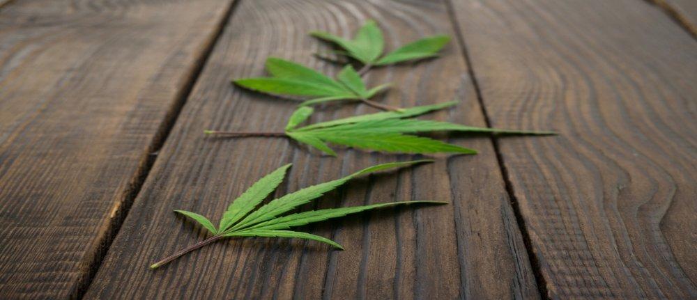 cannabis, medicinal,leafwellpr
