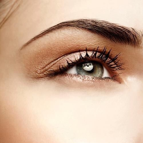Brows. Brows. Brows!! 😍 Stunning Microbladed Brows; book your appointment today for natural & flawless looking brows.  #pinkstudiobrows #permanentinkstudiobrows #microblading #microblade #microbladedbrows #permanentmakeup #permanentbrows #brows #browgoals #browgamestrong #browsonpoint #boldbrows #yegbrows #yegmicroblading #yegmicroblade #yegpermanentmakeup #yegpermanentbrows #yegspa #yegbeauty #like #likeback #follow #followback