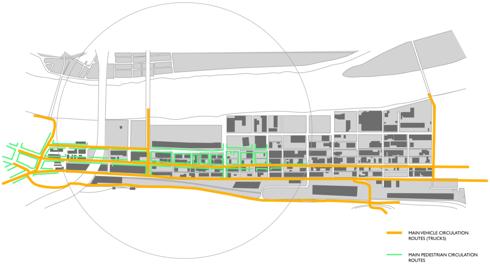 Main Vehicle and Pedestrian Circulation