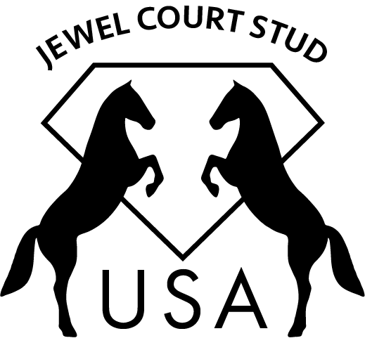 JEWEL COURT STUD USA