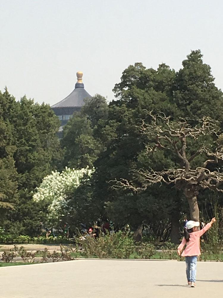 Gardens in Beijing