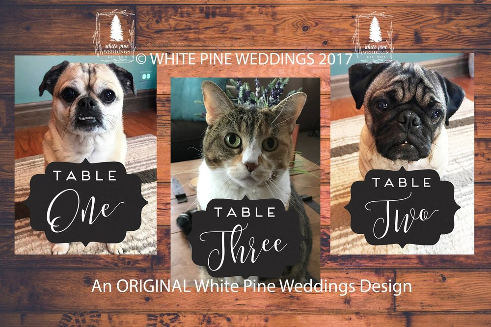 White Pine Weddings  on Etsy makes adorable pet table numbers for weddings!!