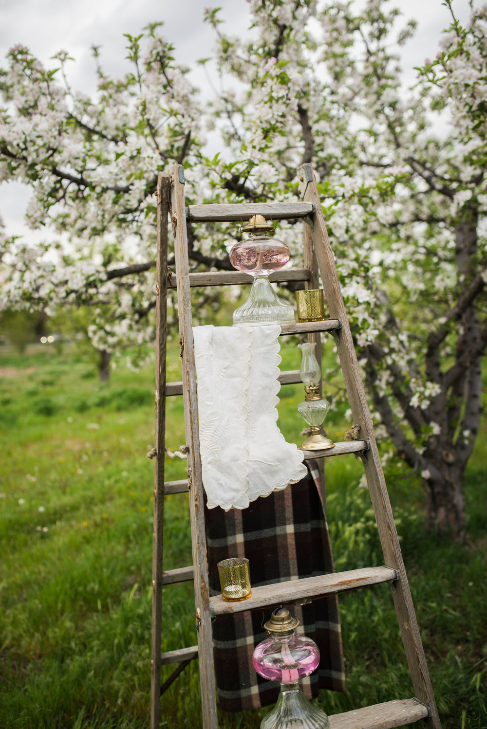 $25.00 perfect vintage apple picking ladder that can be used for many uses with display.
