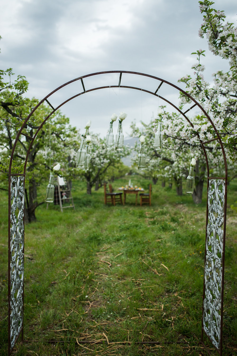 $75.00 Wrought Iron archway. Could be covered in greens and flowers for a perfect secret garden wedding.