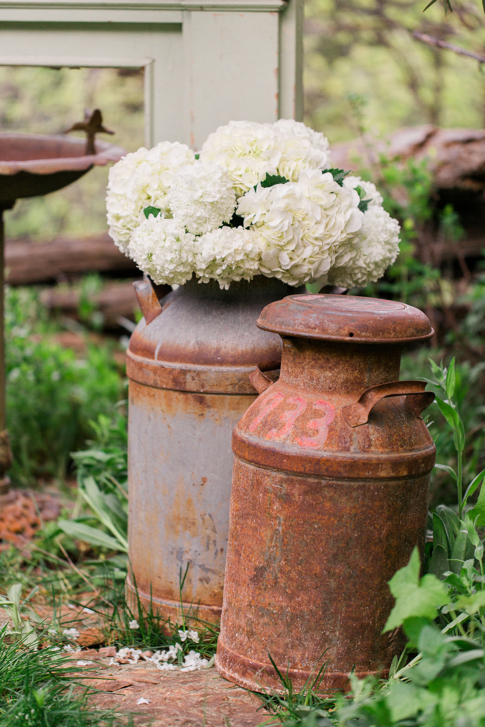 $15.00 Rustalicious milk jugs can be used for flowers and a fun element to add your your decor.