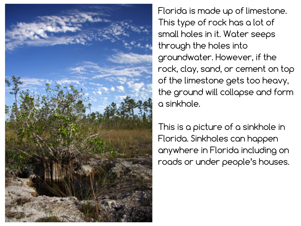 Florida Presentation (24).png