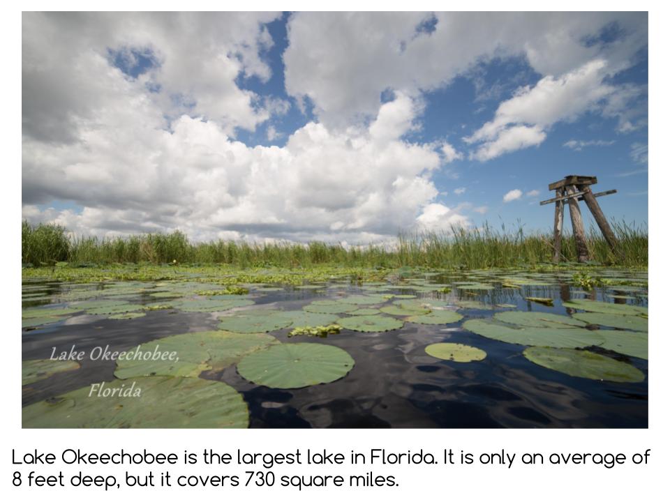 Florida Presentation (2).png