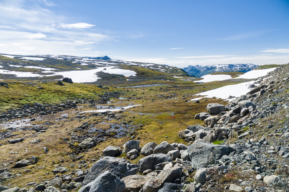 Tundra