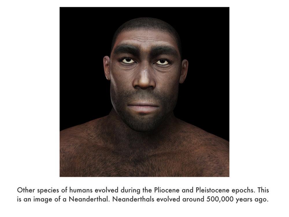 Cenozoic Era.022.jpeg