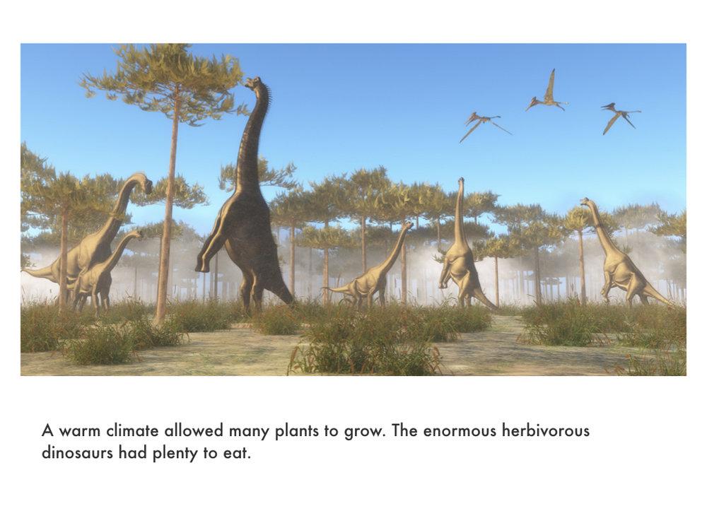 Mesozoic Era.031.jpeg
