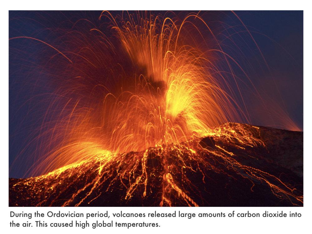 Ordovician Period.020.jpeg