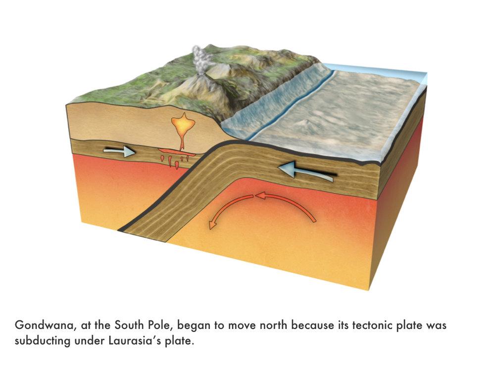 Devonian Period.021.jpeg