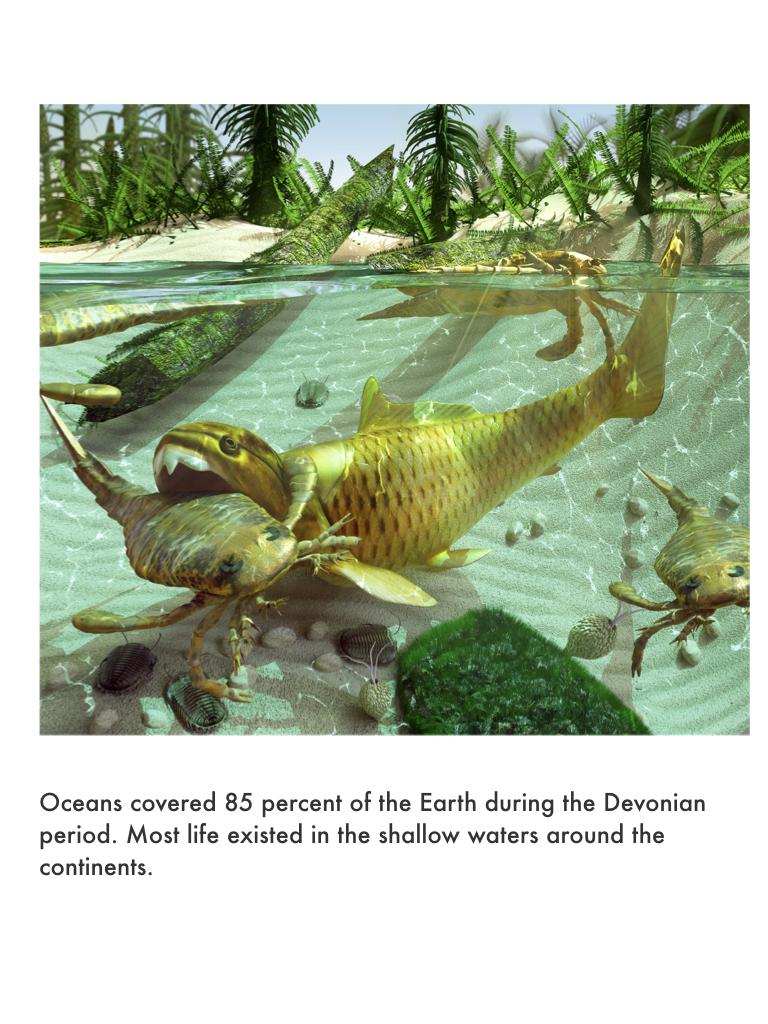 Devonian Period.023.jpeg