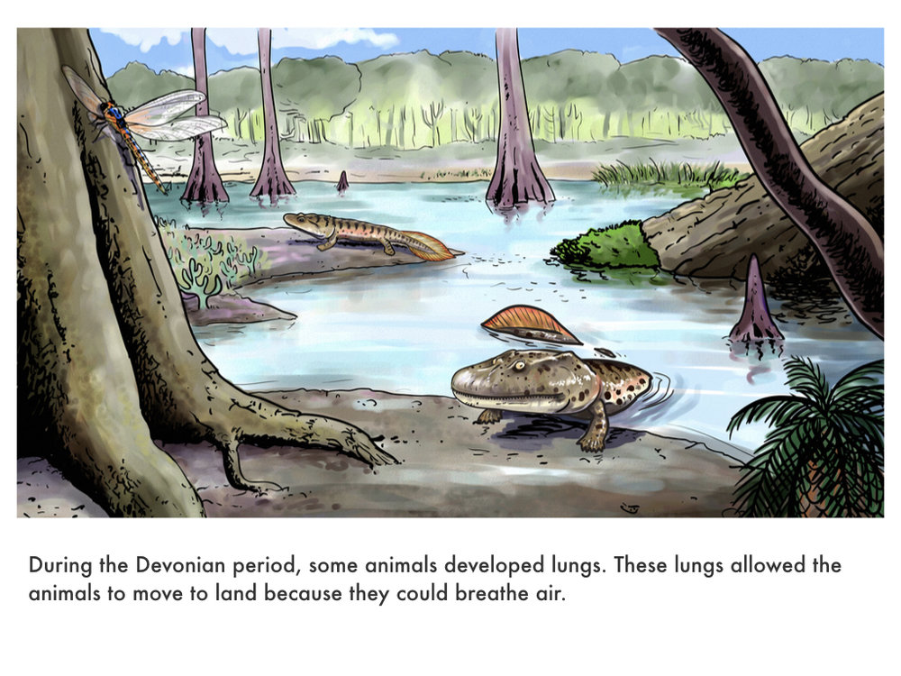 Devonian Period.024.jpeg