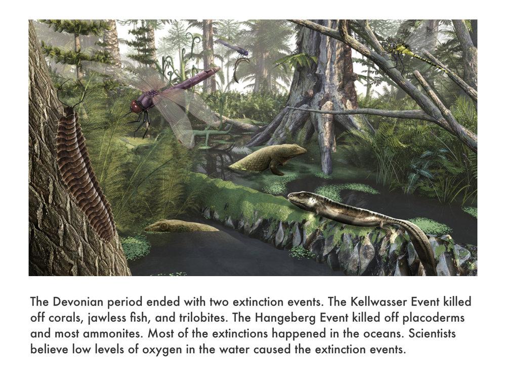 Devonian Period.039.jpeg