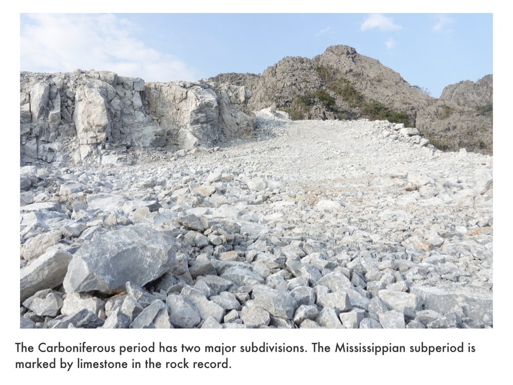 Carboniferous Period.020.jpeg